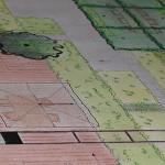 Tuinontwerp modern met vlonder en dakbomen