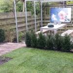 gras pergola steigerbuis taxushaag rivius tuinaanleg tuinontwerp