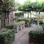 klinkers taxus haag plantkuipen rivius tuinontwerp (2)
