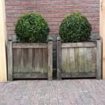 pergola larixhout patiotuin plantkuipen rivius ontwerp