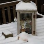 sneeuw structuur rivius tuinontwerp