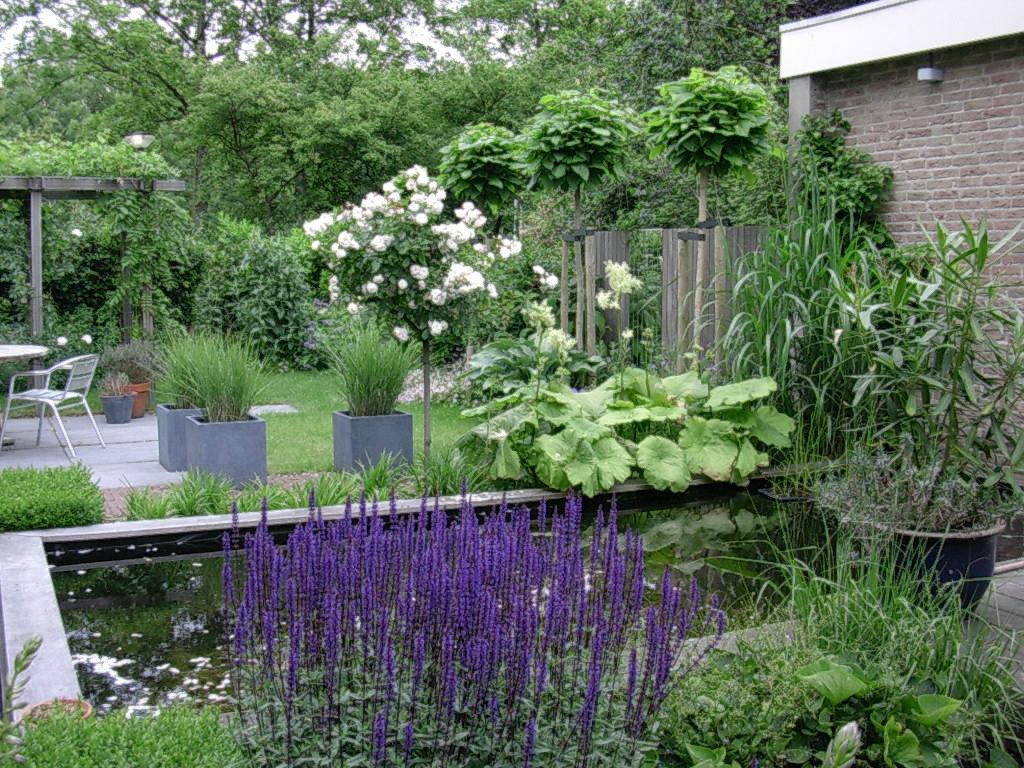 Romantische tuinen rivius - Massief idee van tuin ...