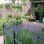 voortuin met lavendel en rozen op stam rivius tuinontwerp
